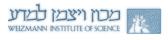 logo-institut weizman